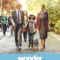 Wonder #Film