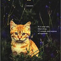 """Recensione """"Il gatto che aggiustava i cuori"""" di Rachel Wells"""